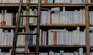 riiul, raamatud