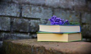 french courses, autumn 2017, prantsuse keele kursused, sügis 2017, keeleõpe
