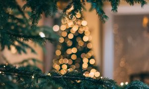 jõuluaperitiiv