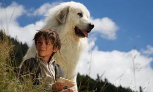 Films français à la télévision estonienne