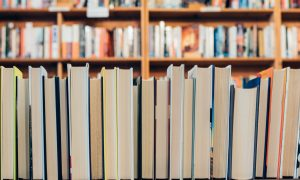 digiraamatukogu Culturethèque