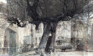 Jean Arnaud exposition